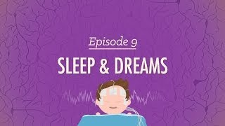 To Sleep, Perchance to Dream - Crash Course Psychology #9 width=