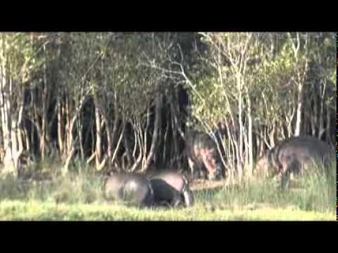 Eastern Shores Nature Reserve – South Africa Travel Channel 24