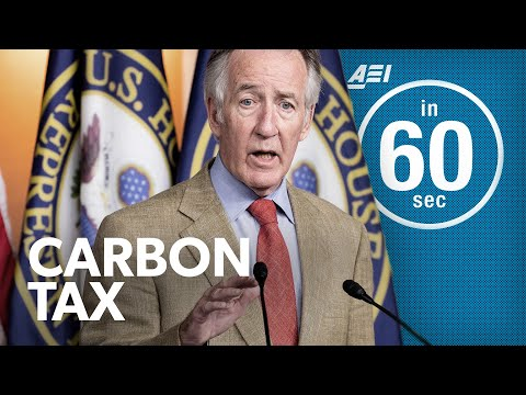 Carbon tax vs. Corporate tax   IN 60 SECONDS photo