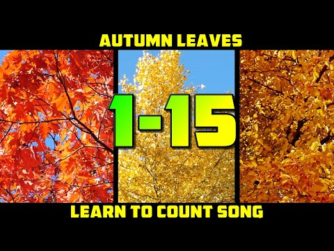 LEARN TO COUNT 1-15 SONG | Autumn counting song for kids - YouTube