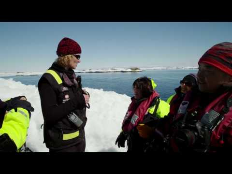 Hurtigruten | Antarctica Falkland & South Georgia