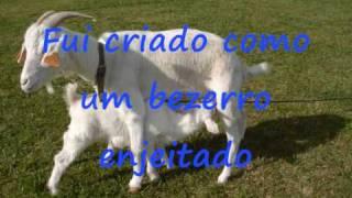 Quim Barreiros A cabritinha.wmv