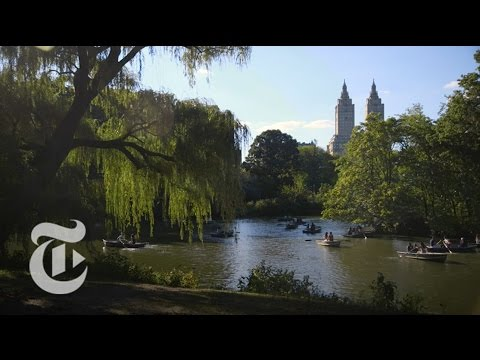 The Microbes of Central Park | The New York Times