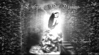 Labyrinth Of Dreams | Nox Arcana (Grimm Tales)