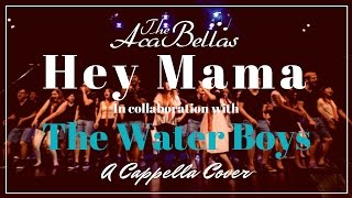 Hey Mama - David Guetta feat. Nicki Minaj (A Cappella Cover w/ The Water Boys)