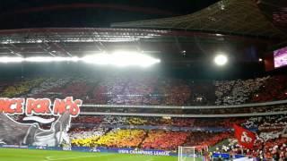 Benfica -  Dortmund Champions League Hino Slb