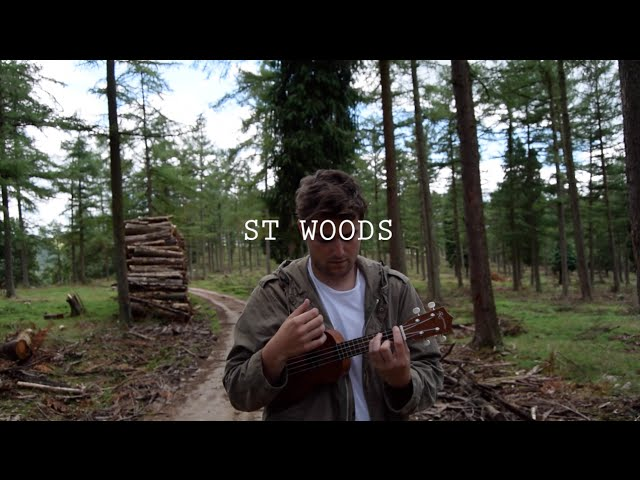 ST WOODS - All These Places We've Gone Are Frames of Our Dreams