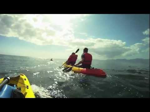 Sea Kayaking South Africa – Kayaking in Gansbaai