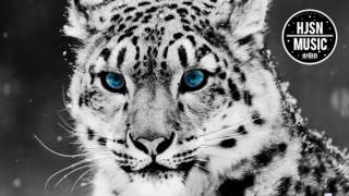 [EDM] Dawns - Tiger