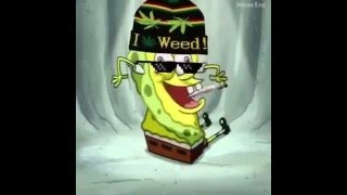 Smoke weed every day spongebob