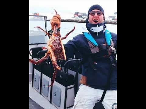 Kongekrabbefiske ved Nordkapp