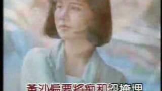 蔡幸娟——问情(KTV版)