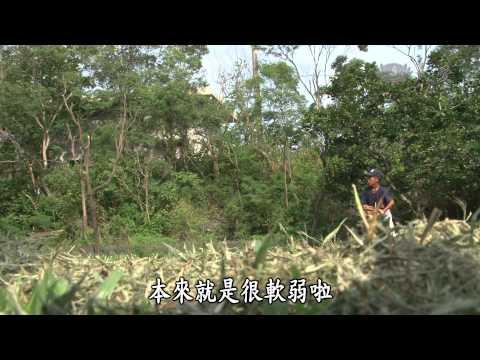 【地球的孩子】20141006 - 棒球奶爸 - YouTube