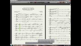 Radiant As A Bride - String Quartet Arrangement