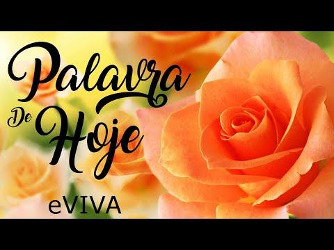 PALAVRA DE HOJE 30 DE JUNHO 2020 eVIVA MENSAGEM MOTIVACIONAL PARA REFLEXÃO PROVÉRBIOS BOM DIA MANHÃ!