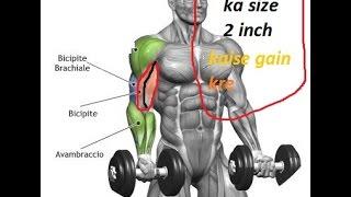 how to: biceps gain workout 2inc  (hindi/English)