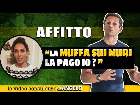 L'AFFITTUARIO deve pagare i DANNI DA MUFFA E UMIDITÀ? | Avv. Angelo Greco