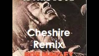 Bob Marley & The Wailers-Is This Love(Cheshire RMX)