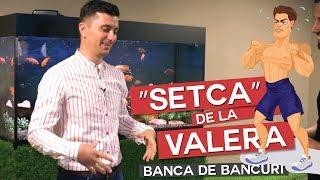 """BANCA DE BANCURI ȘI """"SETCA DE LA VALERA"""""""