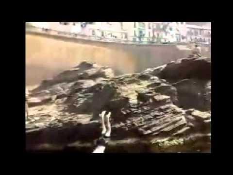 DZjoker : Drole été Algerien