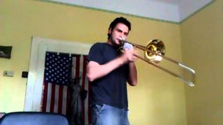 Flight of the Trombone Bee
