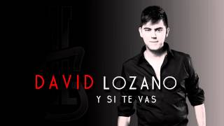 David Lozano - Y Si Te Vas (Audio)