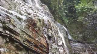 Waterfall and deep jungle sounds of Osa Peninsula