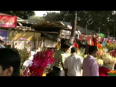 Dhaka City Bangladesh Valentine´s Day 2011 Valentine Asia Bangladeshi Bangla Travel