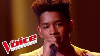 Lisandro Cuxi - « L'Envie d'aimer » (Les 10 Commandements) | The Voice France 2017 | Live