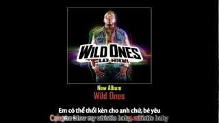 Flo Rida - Whistle (vietsub + kara)