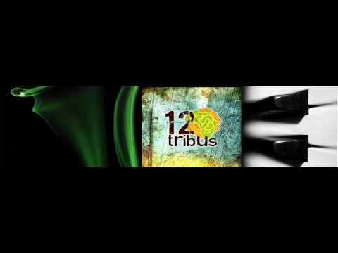 La Vida de 12 Tribus Letra y Video