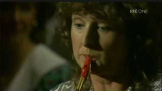 Mary Bergin Tin Whistle