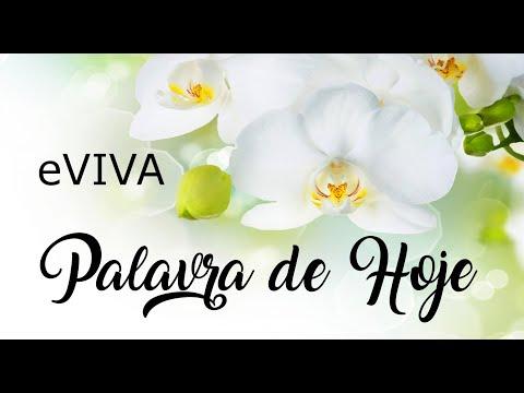 PALAVRA DE HOJE 31 DE MARÇO eVIVA MENSAGEM MOTIVACIONAL PARA REFLEXÃO DE VIDA - BOM DIA!