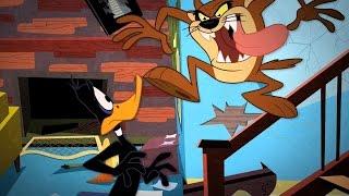 "Daffy Duck VS. Tasmanian Devil ""Taz"" - ""Tasmanian Meltdown"" Song HD"