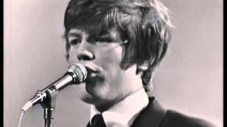 Herman's Hermits: Live in Australia - Excerpt (1966)