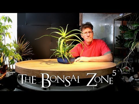Bonsai Updates and more 3D Printing, Part 3, Jan 2017