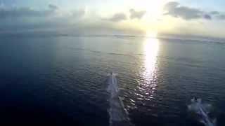 SNBRN feat  Kerli   Raindrops mashup Pier.k