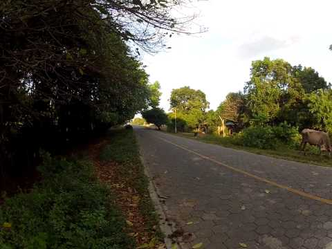 Greenpathways Tours – The quiet life in Ometepe