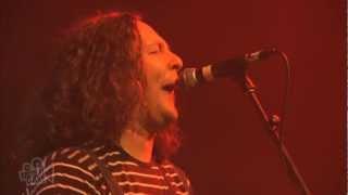The Wonder Stuff - Caught In My Shadow  (Live in Sydney)   Moshcam