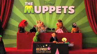 The Muppets get a Hollywood Star!