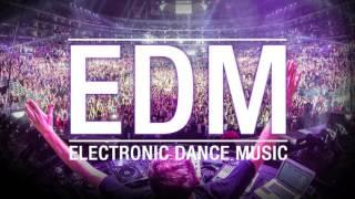 Animals: Digital Underground   Martin Garrix   Electronic & Alternative Cover Song