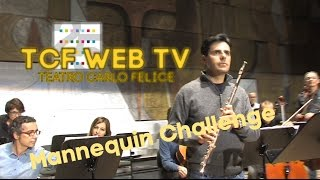Mannequin Challenge - Orchestra del Teatro Carlo Felice di Genova #mannequinchallenge