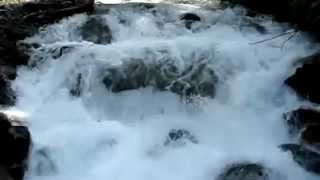 The Relaxing and Soothing Music of a Mountain Stream