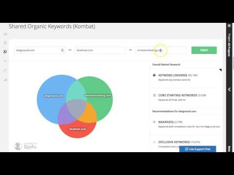Using SpyFy for Competitive Research in SEO Projects