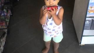 bebe de 1 ano e 7 meses tocando gaita incrivel