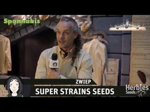Super Strains Seeds @ Spannabis Barcelona 2013