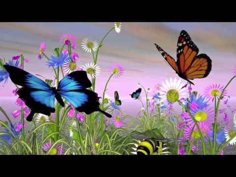 100上小領袖 大班 第二主題#昆蟲花園 - YouTube