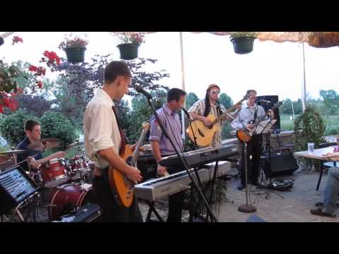 the-wonders-little-wild-one-live-cover-latefeesmusic