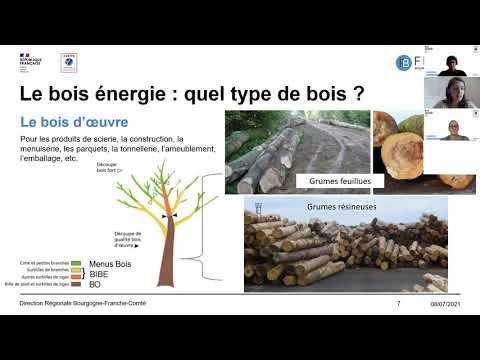 Décryptage du mois : Le bois dans tous ses états !