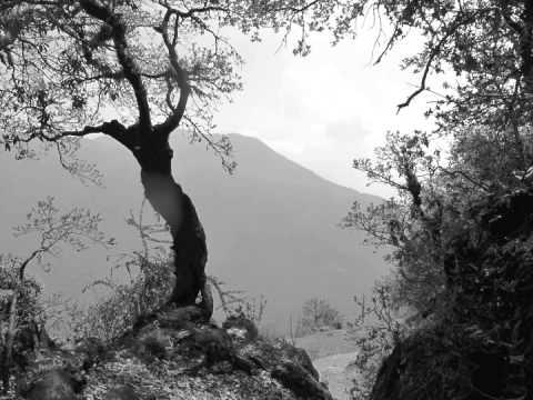 Langtang Trek – Nepal – May 2012